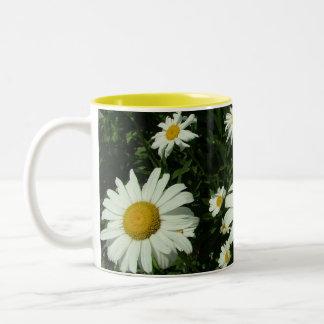 flores de la margarita blanca taza dos tonos