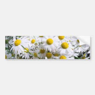 Flores de la margarita pegatina de parachoque