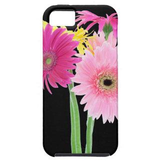 Flores de la margarita del Gerbera iPhone 5 Case-Mate Carcasa