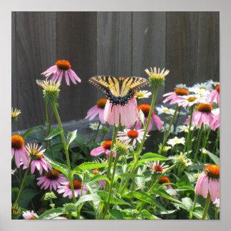 Flores de la mariposa y del cono poster