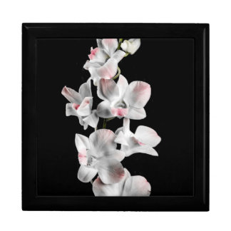 Flores de la orquídea en negro cajas de regalo
