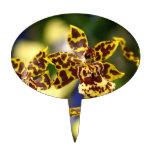 Flores de la orquídea figura de tarta