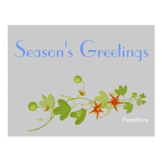 Flores de la pasión tarjetas postales