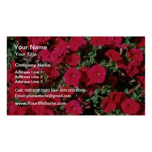 Flores de la petunia del jardín (petunia Hybrida) Tarjetas De Visita