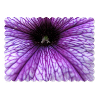 """Flores de la petunia invitación 5"""" x 7"""""""