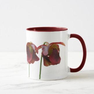 Flores de la planta carnívora taza