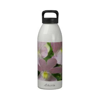 Flores de la primavera botallas de agua