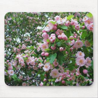 Flores de la primavera alfombrilla de ratones