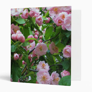 """Flores de la primavera carpeta 1"""""""