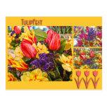 Flores de la primavera de la postal del tulipán de
