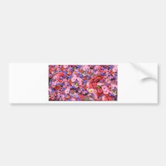 Flores de la primavera en el parque etiqueta de parachoque