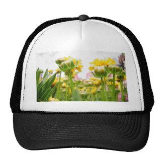 Flores de la primavera en la floración gorros bordados