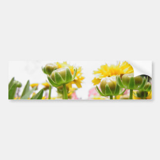 Flores de la primavera en la floración pegatina para auto