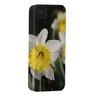 Flores de la primavera iPhone 4 Case-Mate carcasa