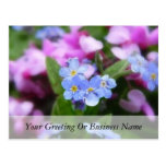 Flores de la primavera - nomeolvides y Redbuds Postal