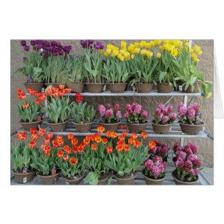 Flores de la primavera para la venta tarjetón