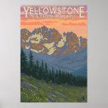 Flores de la primavera - parque nacional de Yellow Poster