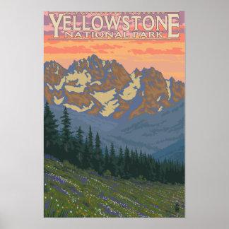 Flores de la primavera - parque nacional de Yellow Póster