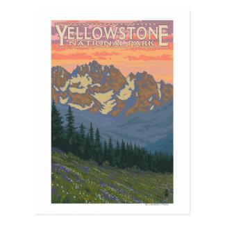 Flores de la primavera - parque nacional de Yellow Tarjeta Postal
