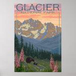 Flores de la primavera - Parque Nacional Glacier,  Póster