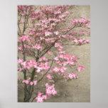 Flores de la primavera poster