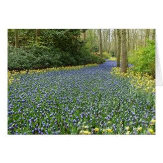 Flores de la primavera - río de jacintos tarjeta pequeña