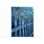 Flores de la primavera tarjetas postales