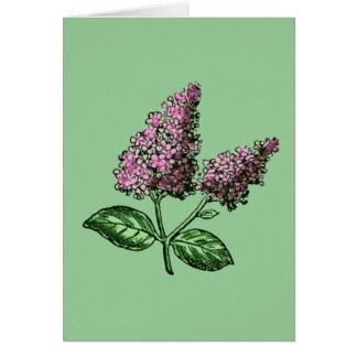 Flores de la púrpura de la lila tarjeta de felicitación