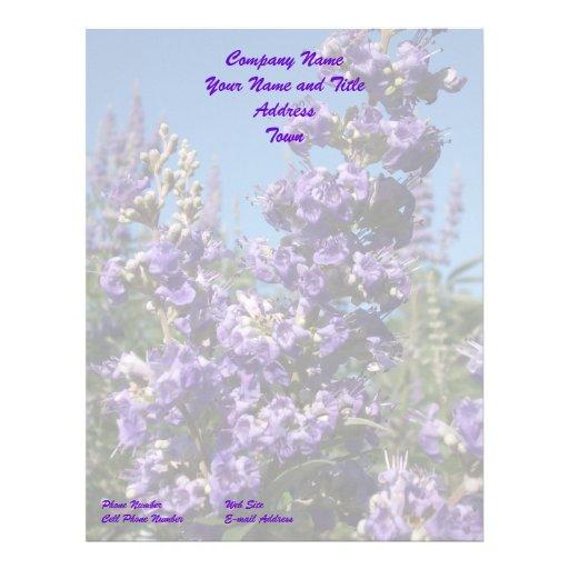 Flores de la púrpura del árbol casto membrete a diseño