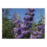 Flores de la púrpura del árbol casto tarjeta de felicitación