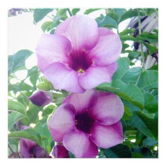 Flores de la República Dominicana Invitación