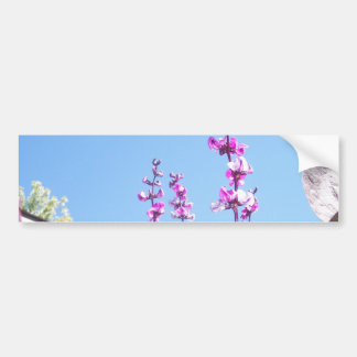 Flores de la vaina púrpura, 2 etiqueta de parachoque