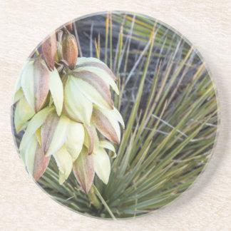 Flores de la yuca de Soaptree en el Missouri Posavasos Personalizados