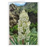 Flores de la yuca en las Azores Felicitacion