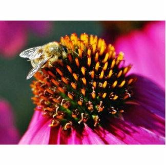Flores de las abejas macras escultura fotografica