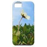 Flores de las amapolas árticas iPhone 5 Case-Mate protector