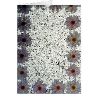 flores de las margaritas blancas felicitacion