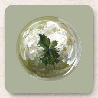 Flores de las parameras en el extracto de cristal  posavasos de bebida