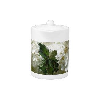 Flores de las parameras en el extracto de cristal