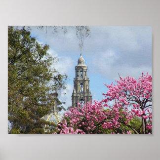 Flores de las torres póster