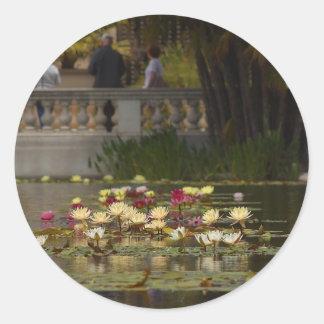 Flores de Lilly Lillies del agua Pegatina Redonda