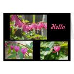 Flores de los corazones sangrantes tarjeta