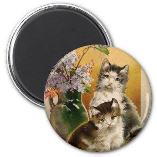 Flores de los gatitos de los gatos del Victorian Imán Para Frigorifico