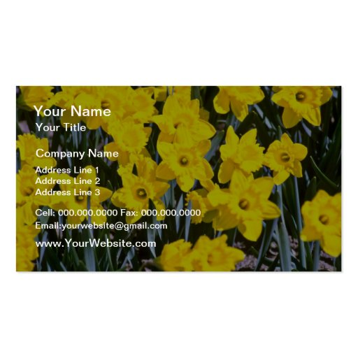 Flores de los narcisos tarjetas de visita