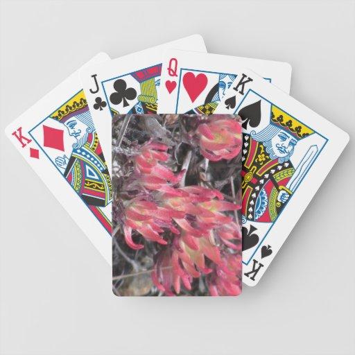 Flores de los Wildflowers de la flora de Idaho del Baraja Cartas De Poker