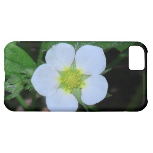 Flores de los Wildflowers de la flora de Idaho del Funda Para iPhone 5C