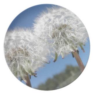 Flores de los Wildflowers de los soplos del diente Plato De Cena