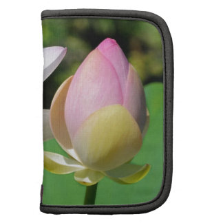 Flores de Lotus sagrado Planificador