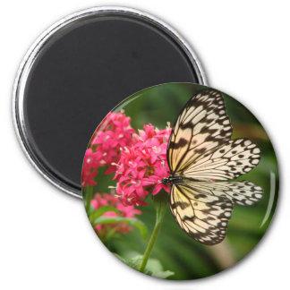 Flores de mariposa 1 imán para frigorífico
