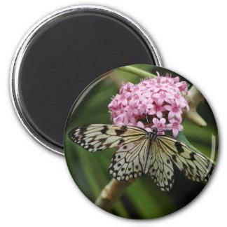 Flores de mariposa 2 iman de frigorífico